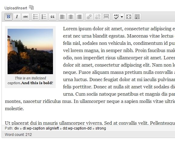 caption_in_editor[1]