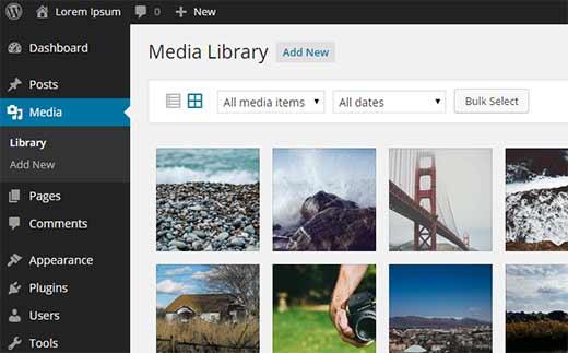 wp-media-library[1]