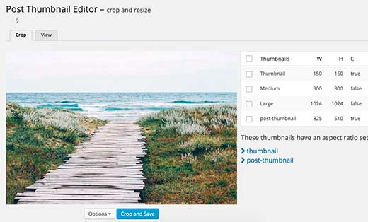 thumbnail-editor[1]