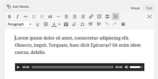 audiofileineditor[1]