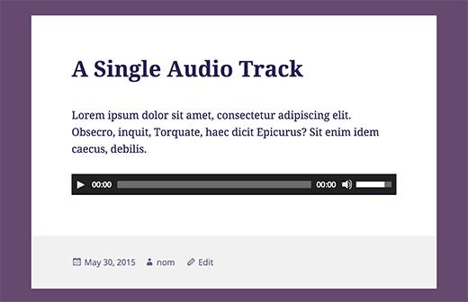 single-audio-track[1]