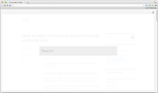 fullscreensearchoverlay[1]