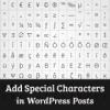 Как добавлять специальные символы в записи WordPress