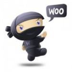 woothemes-ninja-logo-brand-180x180[1]