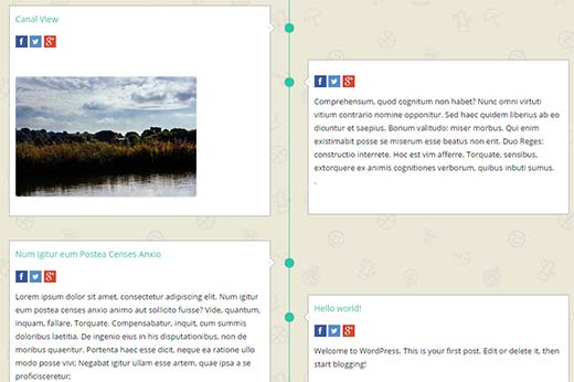 facebook-timeline-wordpress[1]
