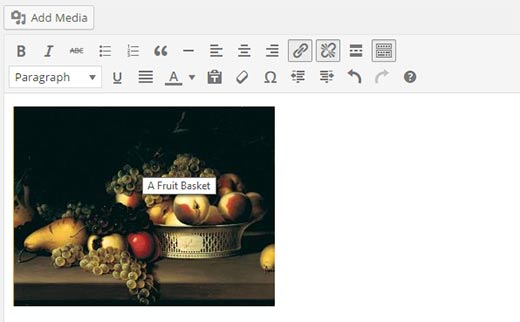 title-displayed-editor[1]