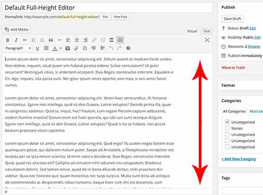 default-full-height-editor-wordpress[1]