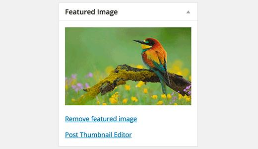 launch-thumbnail-editor1[1]