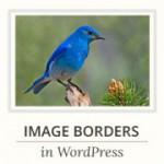 imageborders-180x180[1]