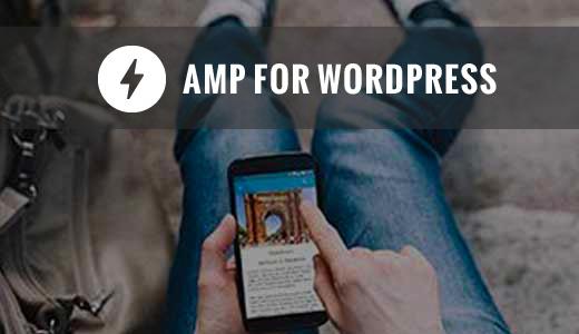 ampforwordpress[1]