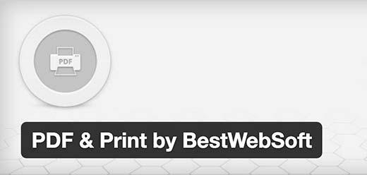 pdfandprint[1]